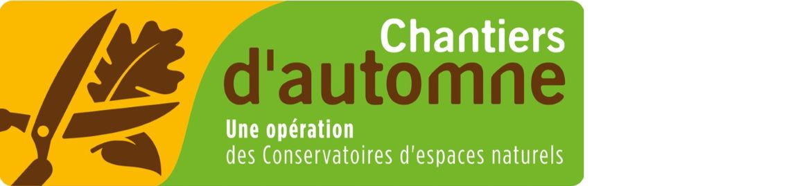 Chantier_automne